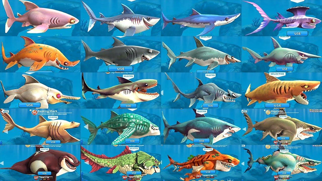 hungary shark world